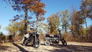 motoadvr_scramblertigeronhilltop