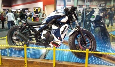 2017-honda-rebel-300-custom-tiger-shark-motoadvr