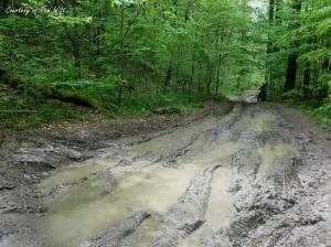Spaas Creek Mud Field Triumph Scrambler MotoADVR