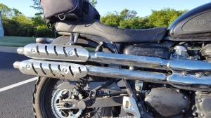 Triumph Scrambler Bird Guts MotoADVR