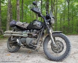 Triumph Scrambler Dirty MotoADVR