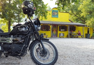 Rose the Scrambler Miguels Pizza MotoADVR