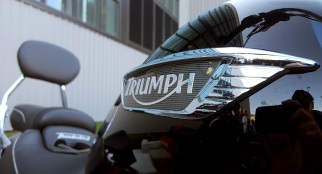 Triumph Thunderbird Tank Badge MotoADVR