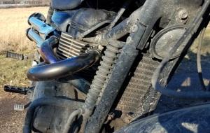 Triumph Scrambler Oil Cooler MotoADVR