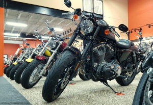 Harley Davidson Roadster MotoADVR