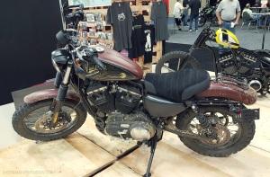 Harley Scrambler Black Dragon MotoADVR