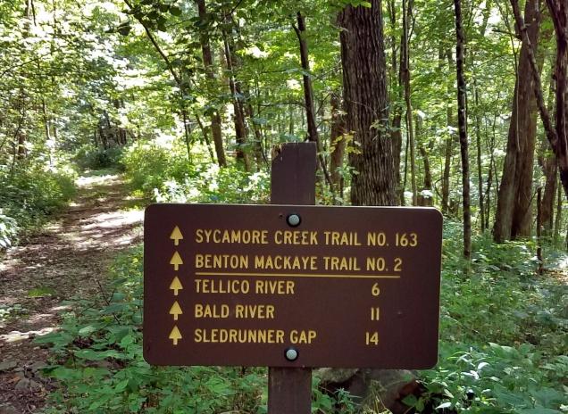 Sycamore Trail Sign MotoADVR