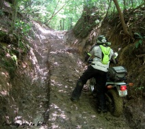 Mountain Springs Road Ruts Tom Witt