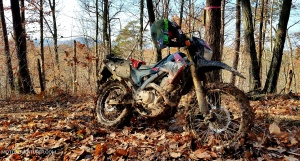 Honda CRF250L Clay Single Track MotoADVR