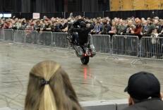 Harley Street Glide Wheelie MotoADVR